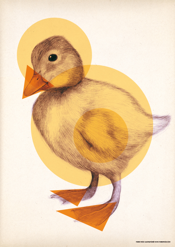 Canard pierre piech illustration - Illustration canard ...